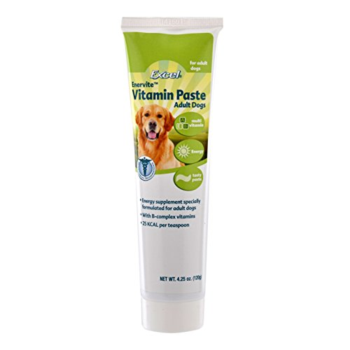 Excel Enervite Daily Supplement Vitamin Paste for Adult Dogs, 4.25-Ounce